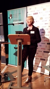 Mary McKenna speaking at NI Chamber Creative Connections event