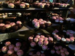 Cupcake lorry at the John Mayer concert